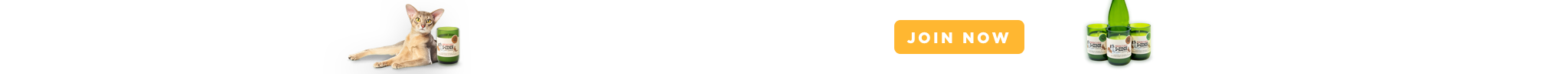 February Petcube Care perk! Join Now