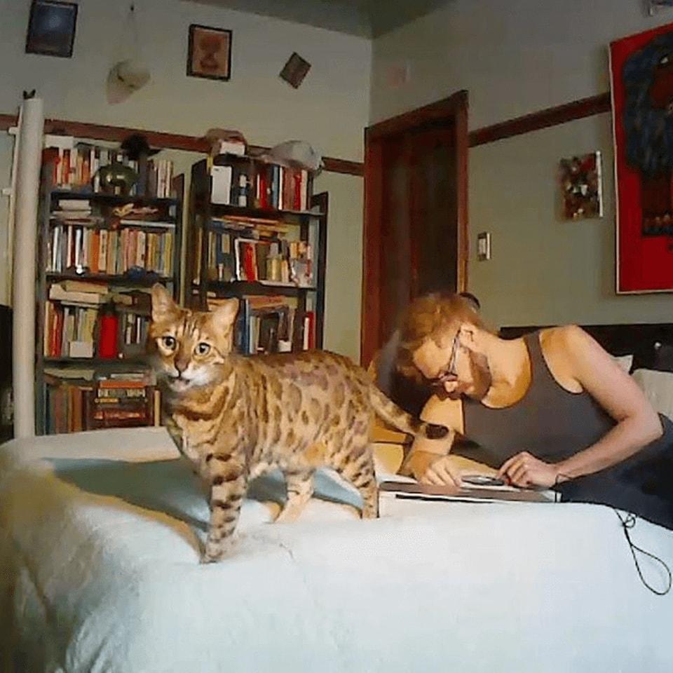 Free teen webcam cat