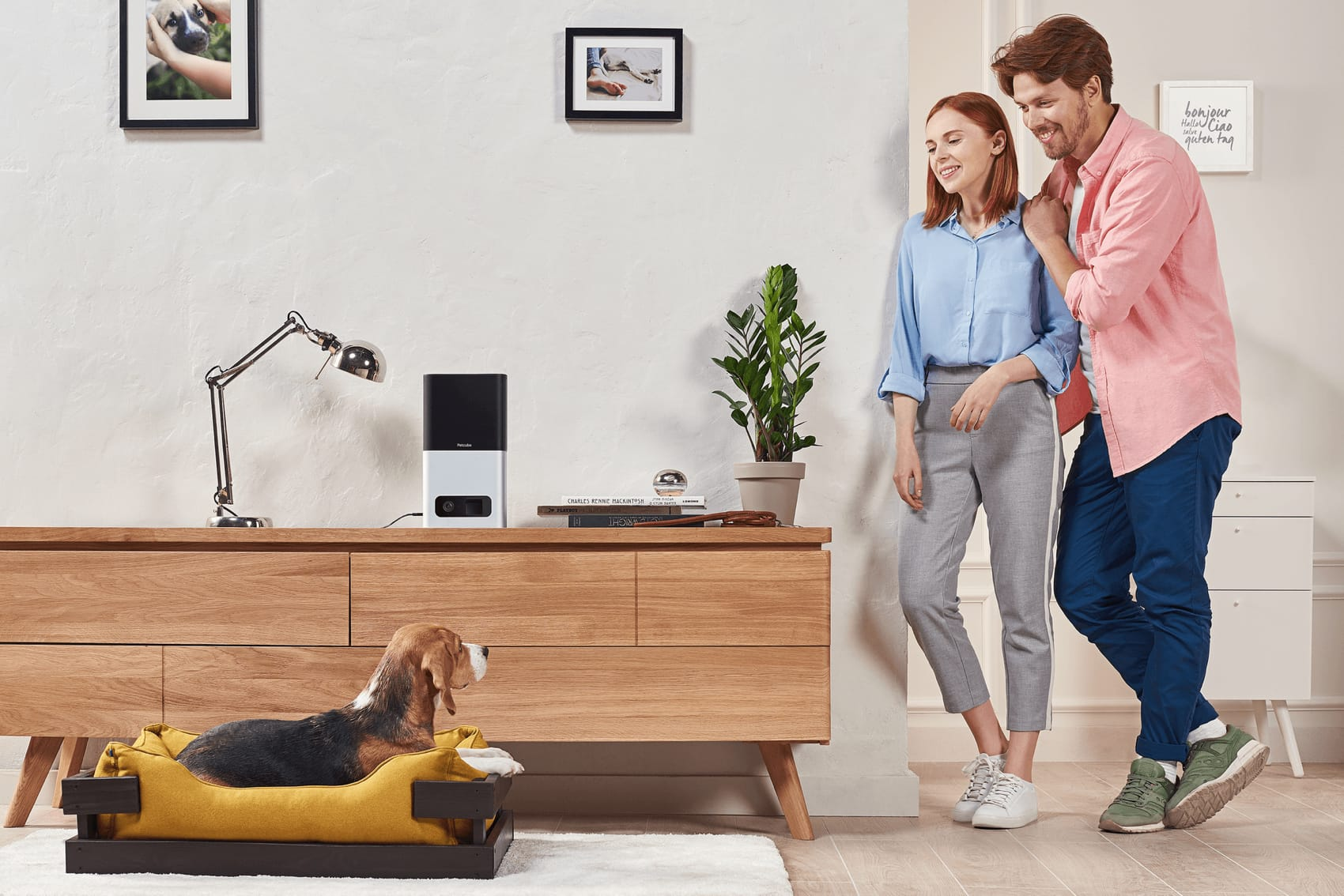 Petcube Bites with couple and beagle