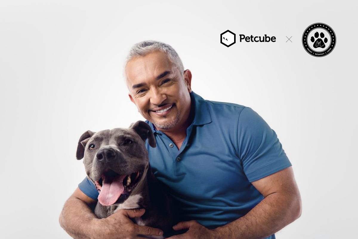 Cesar Millan with a dog