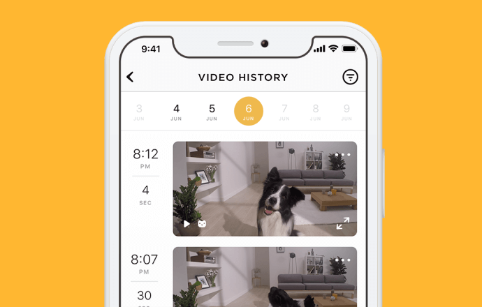 Petcube Care app timeline